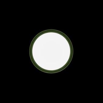 Zidna ili stropna lampa Ares Anna LED IP65 5330